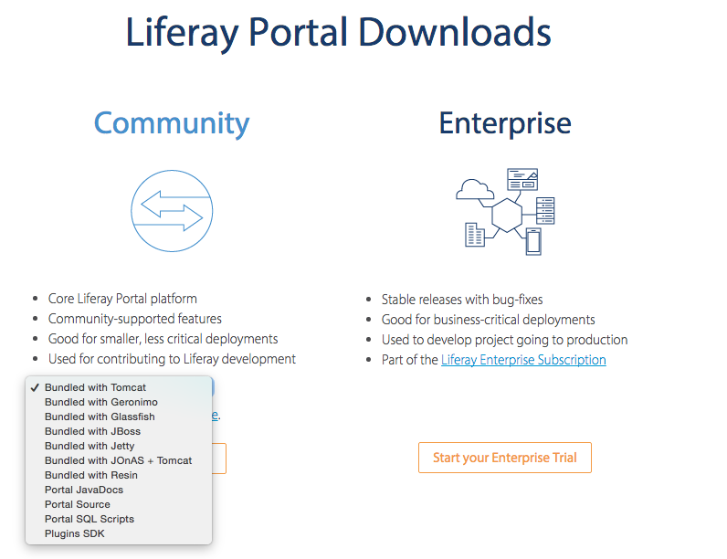 Download Liferay Version